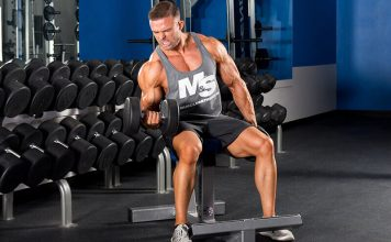 Arm Workout Bodybuilding