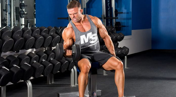 Arm Workout Bodybuilding