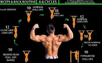 Back Workout Routine