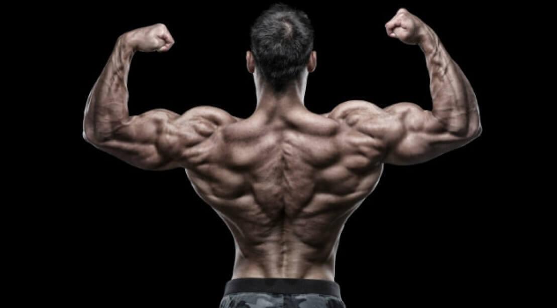 Back Workout Bodybuilding